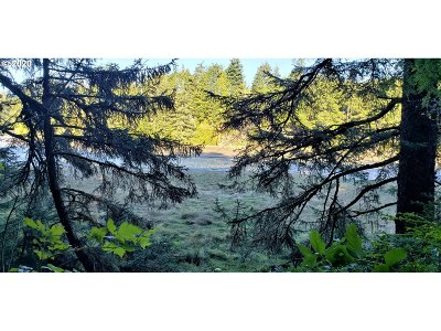 Coos Bay Farm & Ranch For Sale: Crown Point