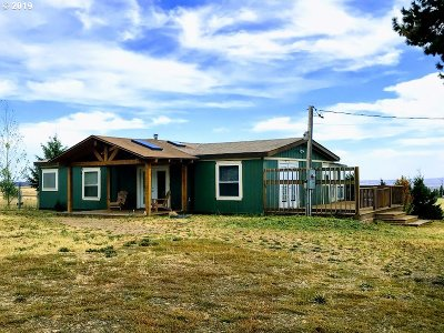 Goldendale Single Family Home For Sale: 656 Pine Forest Rd