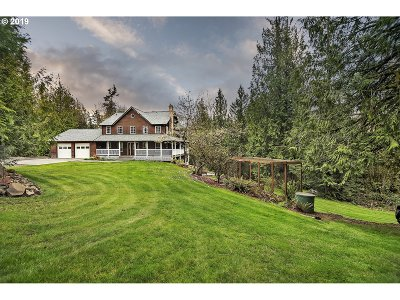 Cowlitz County Single Family Home For Sale: 166 Walker Rd