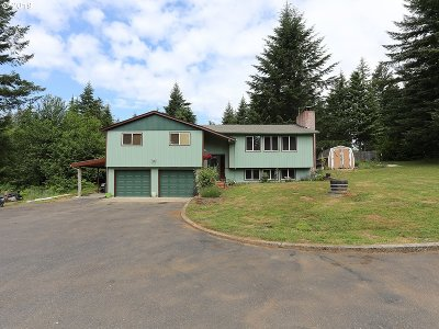 Camas, Washougal Single Family Home For Sale: 3031 Skye Rd
