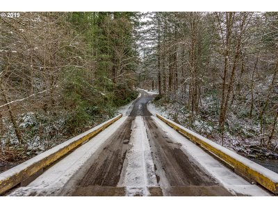 Camas Residential Lots & Land For Sale: NE 320th