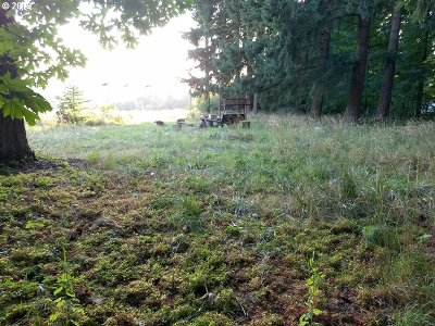 Oregon City Residential Lots & Land For Sale: Terry Michael Dr #700