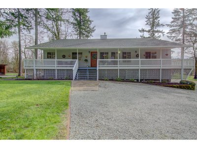 Battle Ground Single Family Home For Sale: 15513 NE 244th St