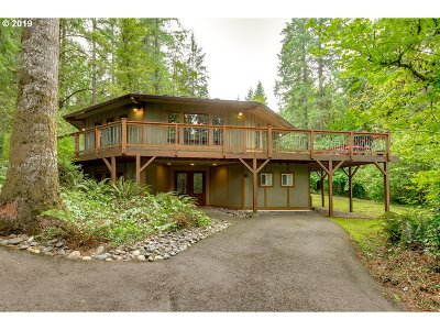 Battle Ground Single Family Home For Sale: 14494 NE Valley View Ln