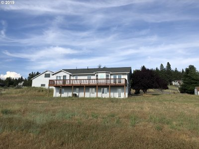 Goldendale Single Family Home For Sale: 69 Adams Loop Rd