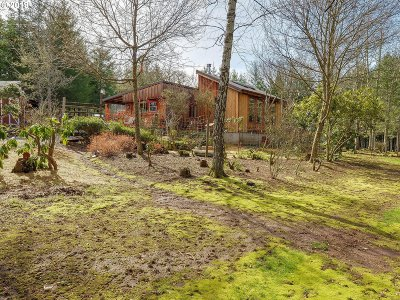 Molalla Single Family Home For Sale: 32770 S Dhooghe Rd
