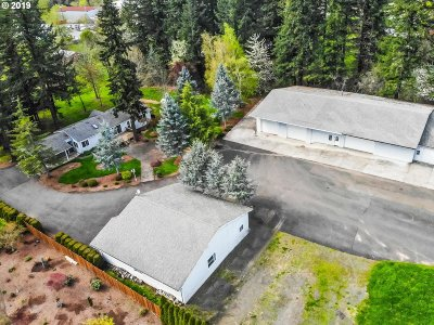 Single Family Home For Sale: 13400 SE 282nd Ln