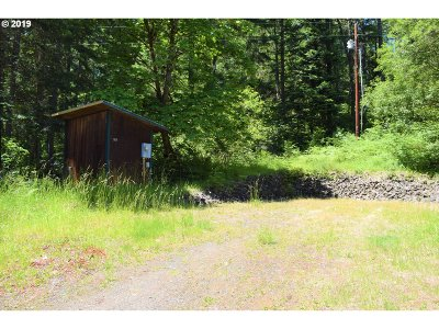 Roseburg Residential Lots & Land For Sale: 787 Snowberry Rd