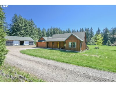 Washougal Single Family Home For Sale: 1211 SE 385th Ave
