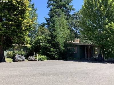 Sweet Home Single Family Home Pending: 1016 North River Dr