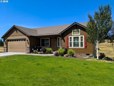 Goldendale Single Family Home For Sale: 535 Foster Rd