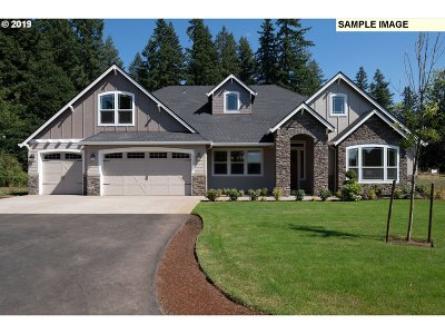 Battle Ground Single Family Home For Sale: NE 171 Ct