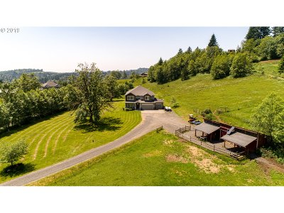 Washougal Single Family Home For Sale: 442 White Dog Rd