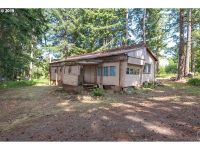 Estacada Single Family Home For Sale: 42405 SE Porter Rd