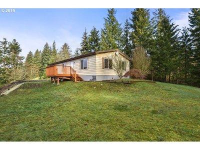 Kalama Single Family Home For Sale: 2194 Green Mountain Rd