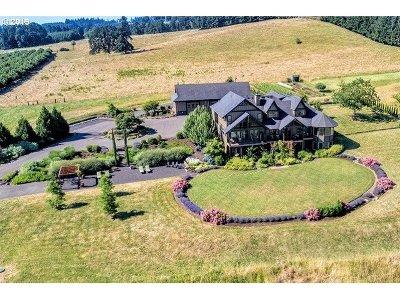Newberg Single Family Home For Sale: 20300 NE Highway 240
