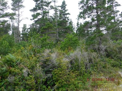 Bandon Residential Lots & Land For Sale: Chantrelle Dr #4
