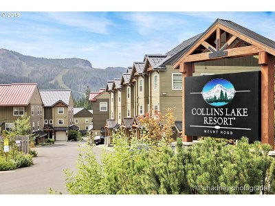 Government Camp Condo/Townhouse For Sale: 88086 E Alpenglow Ln #P-47
