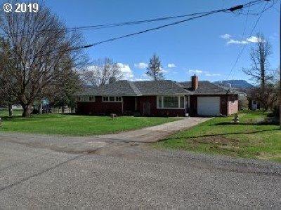 Elgin Single Family Home For Sale: 1100 Detroit St