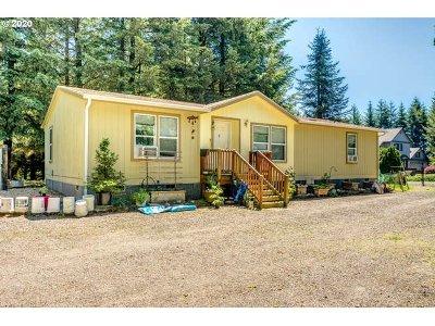 Brush Prairie Single Family Home For Sale: 14700 NE 114th Ct