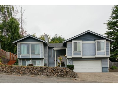 Salem Single Family Home For Sale: 3097 Lakeview Dr NW