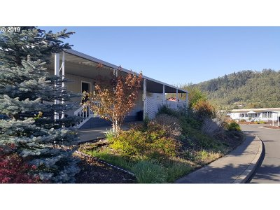 Roseburg Single Family Home For Sale: 801 Shadow Ranch Ln