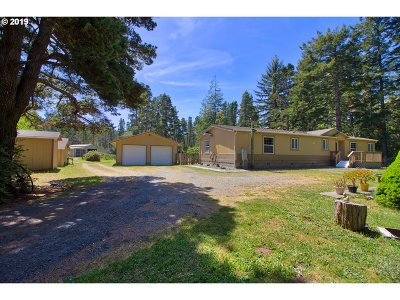 Bandon Single Family Home For Sale: 58612 Seven Devils Rd