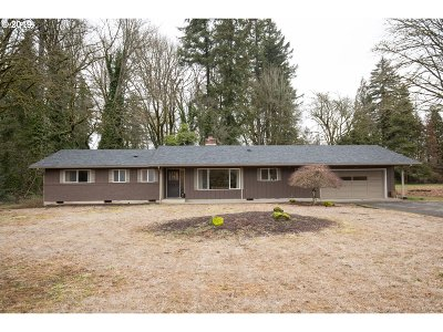 Battle Ground Single Family Home For Sale: 13512 NE 238th Way