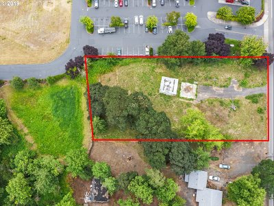 Molalla Residential Lots & Land For Sale: 31330 S Highway 213