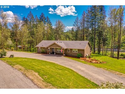Woodland Single Family Home For Sale: 2893 Lewis River Rd