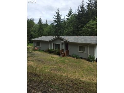 Kalama Single Family Home For Sale: 157 Great Northern Rd