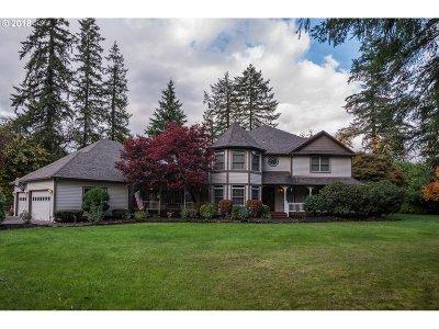 Battle Ground Single Family Home For Sale: 13310 NE 287th Cir