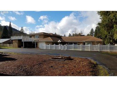 Roseburg Single Family Home For Sale: 240 Akin Ln