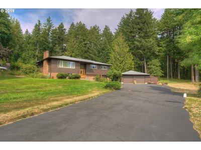 Stevenson Single Family Home For Sale: 302 Bone Rd