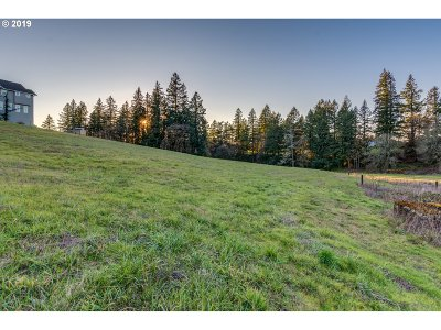 West Linn Residential Lots & Land For Sale: 24835 SW Mountain Rd