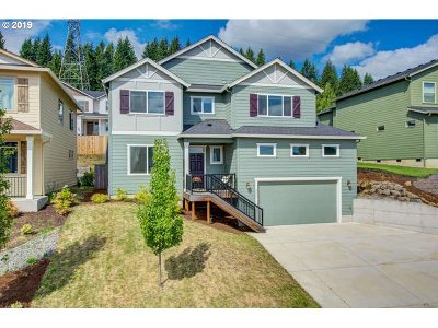Washougal Single Family Home For Sale: 4055 St