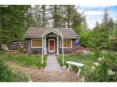 Welches Single Family Home For Sale: 24205 E Evergreen Park St