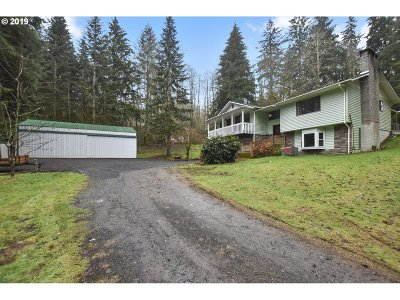 Cowlitz County Single Family Home For Sale: 319 Ragland Rd