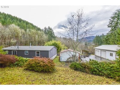 Cowlitz County Single Family Home For Sale: 399 Mountain View Rd
