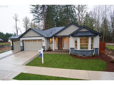 Battle Ground Single Family Home For Sale: 2908 NE 4th Ave
