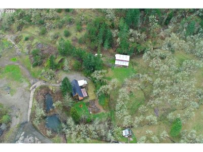 Roseburg Single Family Home For Sale: 1940 Newton Creek Rd