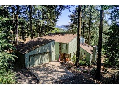 Newberg Single Family Home For Sale: 29270 NE Wind Song Ln
