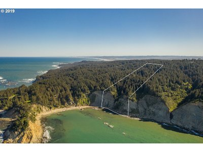 Coos Bay Farm & Ranch For Sale: Cape Arago #600