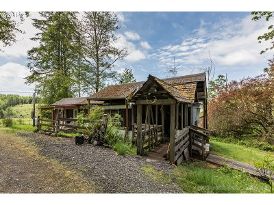 North Plains Single Family Home For Sale: 25015 NW Moreland Rd