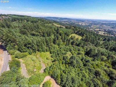 Newberg, Dundee, Mcminnville, Lafayette Residential Lots & Land For Sale: 17790 NE Hillsboro Hwy