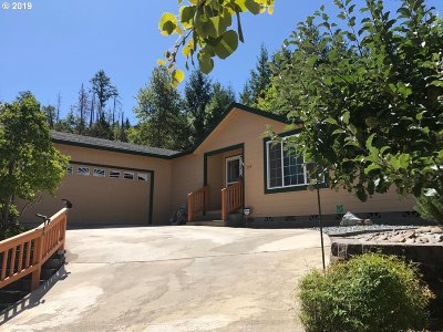 Canyonville Single Family Home For Sale: 195 Samantha Way