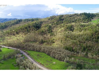 Roseburg Farm & Ranch For Sale: Newton Creek Rd #1 & 2
