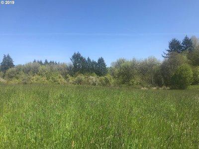 Salem Residential Lots & Land For Sale: 732 Macinness Ln