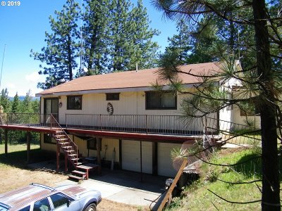 Goldendale Single Family Home For Sale: 396 Old Mtn Rd