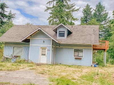 Battle Ground Single Family Home For Sale: 28412 NE 66th Ave
